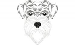 Schnauzer von OhMyCS Sketch